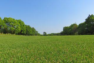 1903年5月24日、ゴルフ場記念日