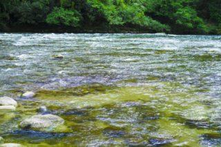 ・1996年7月7日は、「川の日」