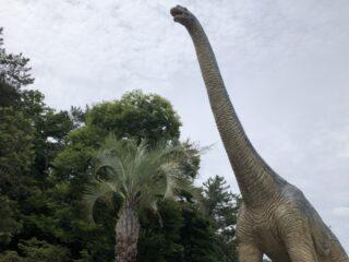 "<span class=""title"">2010年3月5日、恐竜絶滅の原因は小惑星の衝突</span>"